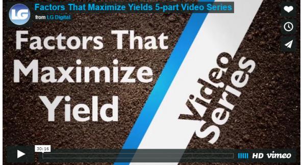 Factors That Maximize Yields 5-Part Video Series